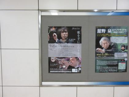 IMG_7291.JPG