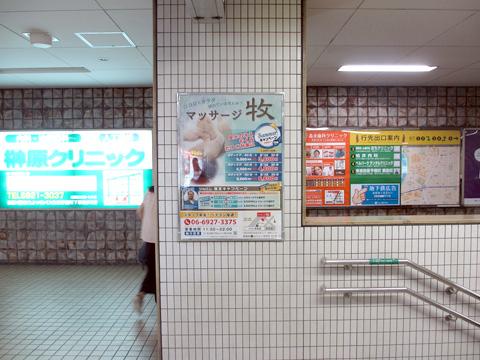 maki_miyakojima.jpg